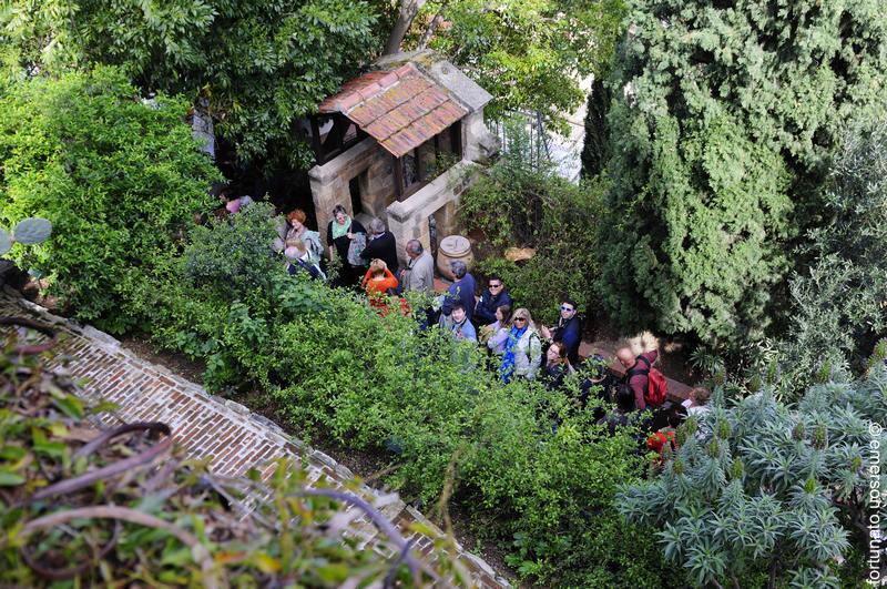 Alassio siti di interesse parco di villa della pergola for Giardini villa della pergola