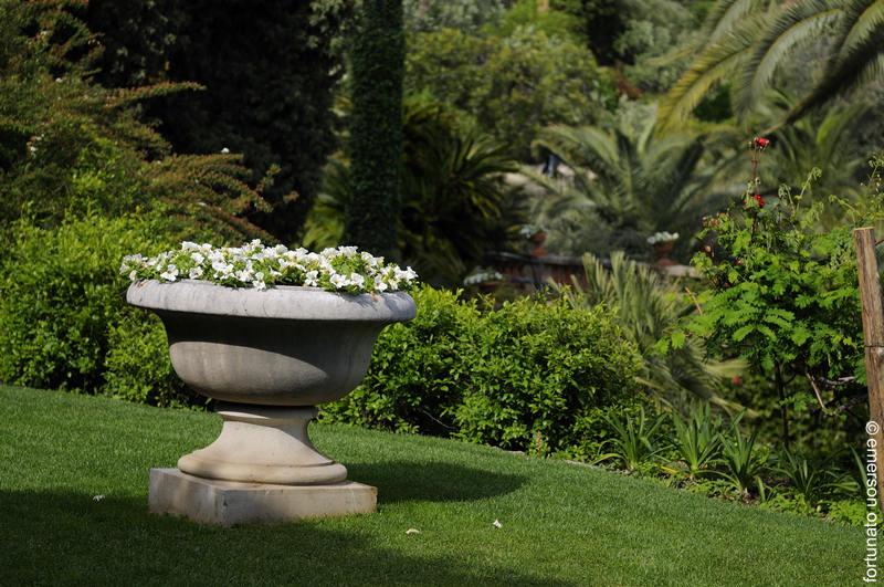 Www Giardini Di Villa Della Pergola Com